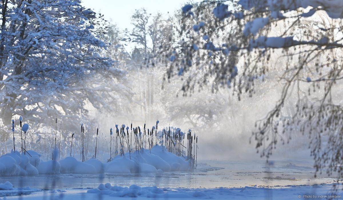 Valgejõgi