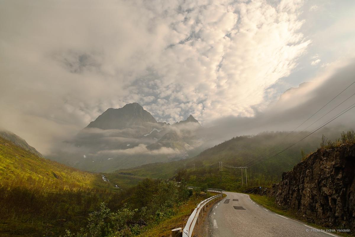 Üks tavaline Norra tee